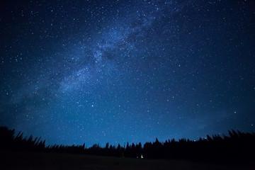 Niebieskie ciemne nocne niebo z wieloma gwiazdami nad polem drzew. Milkyw
