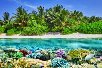 Tropikalna wyspa i podwodny świat na Malediwach. Thoddo