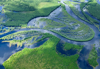 Aerial view forest river