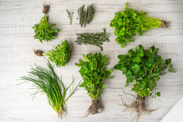 Herbs mix on the table top view