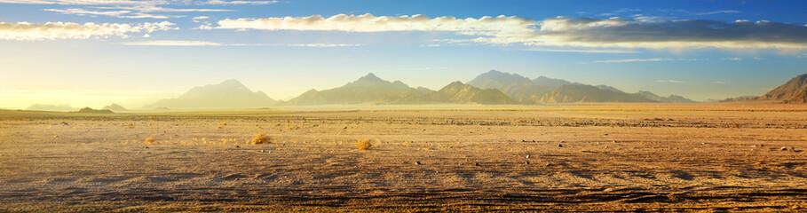Zobacz na pustyni