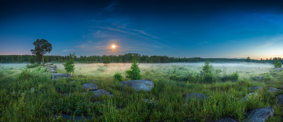 panoramic landscape night meadow