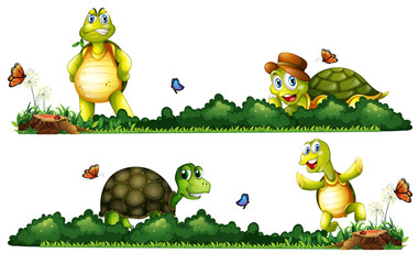 Turtles being happy in the garden