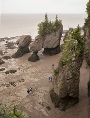 hopewell rocks during low tide new brunswick canada