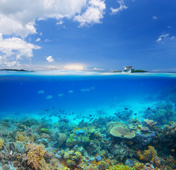 Coral reef on background blue sky and islands.
