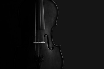 Violin black and white artistic conversion rim lighting