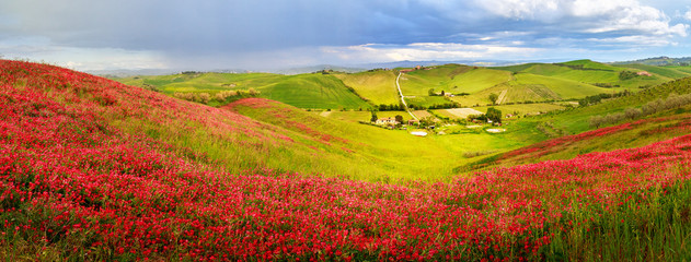 Tuscany scenery: green fields and  hills, panorama landscape.