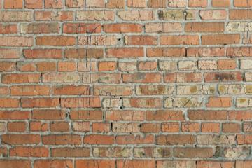 texture red brick wall