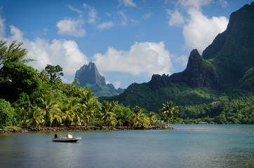 Landscape on green Moorea