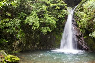 高知県津野町 追合の滝