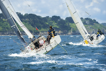 group yacht at race