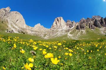 The Rosengarten mountain
