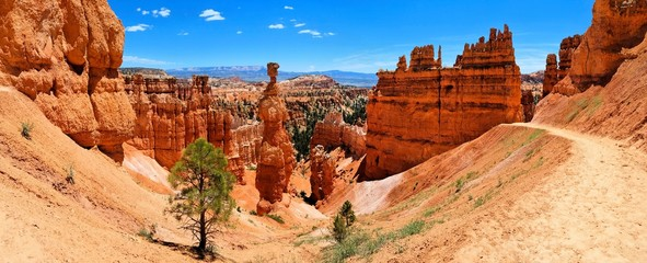 Bryce Canyon National Park panorama with famous Thor's Hammer hoodoo, Utah, USA