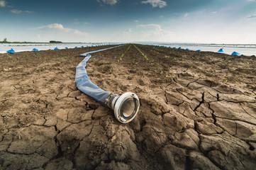 Suchy ląd - susza - i wąż do podlewania