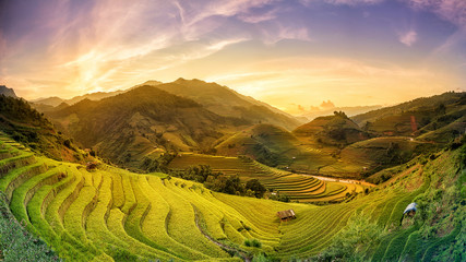 Rice fields on terraced in sunset Mu chang chai, Yen bai, Vietnam