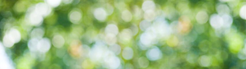 wizerunek naturalny abstrakcjonistyczny tła zbliżenie