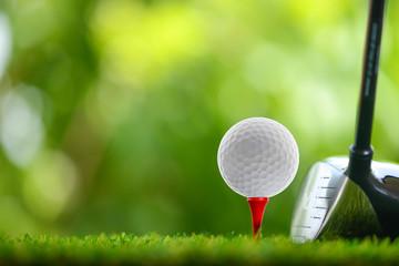 prowadzić golfa