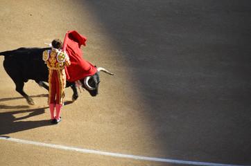 corrida bullfight