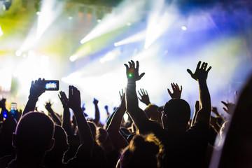 koncert tłum atmosfera publika na festivalu