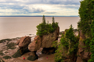 Hopewell Rocks Low Tide horizontal New Brunswick
