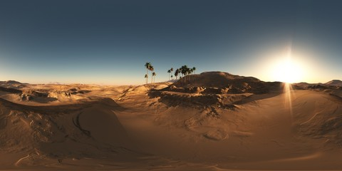 panorama of palms in desert at sunset. made with the one 360 deg