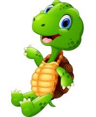 Happy green turtle