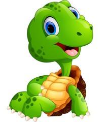 Cute turtle cartoon sitting
