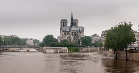 Notre Dame de Paris les pieds dans l'eau