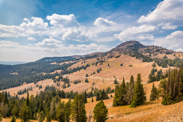 View from Mt. Washburn in Yellowstone National Park