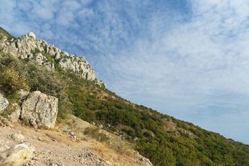 The slope of the mountain South Demerdzhi. Crimea.