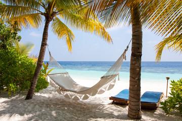 Maldive amaca tra le palme