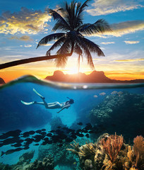 Woman snorkeling in clear tropical waters ocean on sunset day