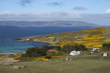 Farm buildings at Carcass Island Settlement in the Falkland Islands.