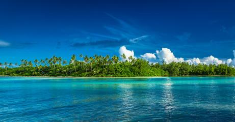 Tropical Rarotonga with palm trees and sandy beach, Cook Islands