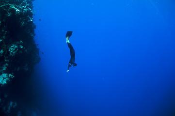 Freediver porusza się pod wodą wzdłuż rafy koralowej