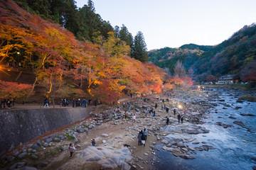 AICHI, - NOV 23: Beautiful landscape in autumn at Korankei, on N