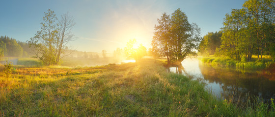 Panoramic landscape of summer morning