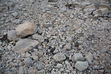 Arctic stone desert surface