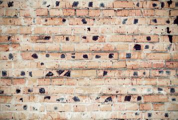 Background of grunge brick wall