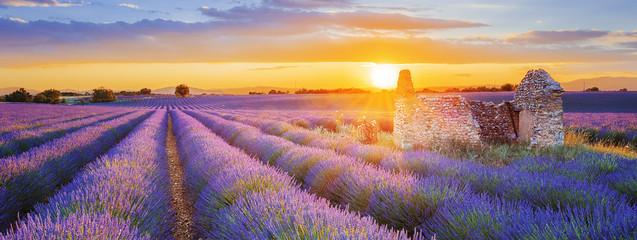 fioletowe pole lawendy w Valensole o zachodzie słońca