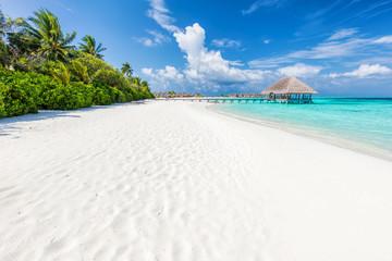 Szeroka piaszczysta plaża na tropikalnej wyspie na Malediwach. Palmy i wat