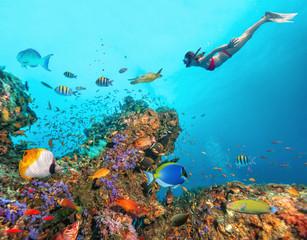 Piękna rafa koralowa z młodą kobietą freediver