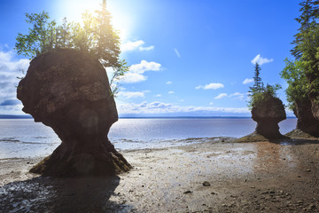 Hopewell Rocks Provincial Park, Nowy Brunszwik, Kanada