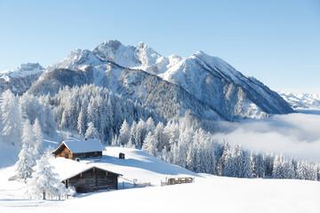 Winterwonderland in the Alps