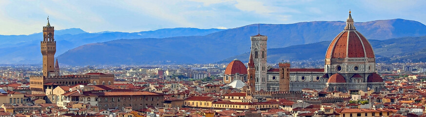 view of Florence with Old Palace and Dome of Cathedral from Mich