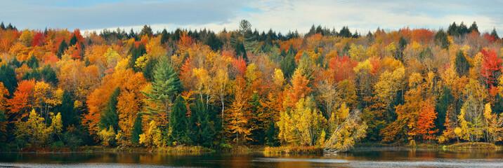 Jezioro Jesienne Liście