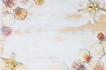 seashells and starfish border on white wooden board.