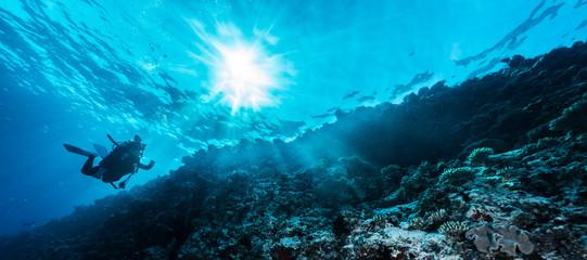 Promienie słoneczne wpadające do morza, podwodny widok
