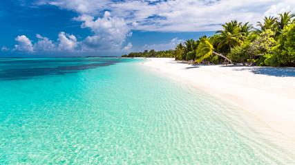 Rajska plaża na Malediwach. Idealna tropikalna wyspa. Piękne palmy i tropikalna plaża. Nastrojowe błękitne niebo i błękitna laguna. Luksusowy podróż wakacje letni tła pojęcie.