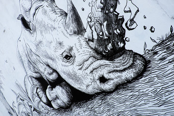Rhino by graffiti art, Rhinoceros painting